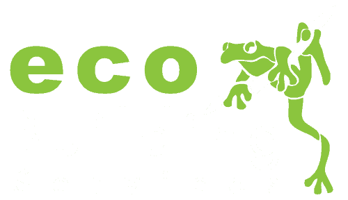 eco-building-services-light-logo-500x288