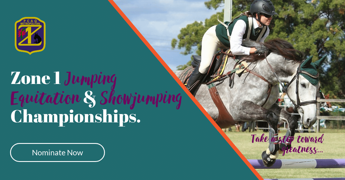 Showjumping Banner